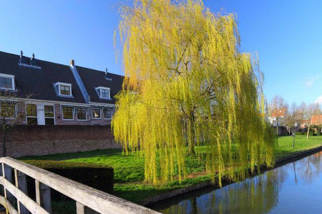 Van-Oord-Makelaardij-Diensten-Fotowedstrijd-IJsselstein