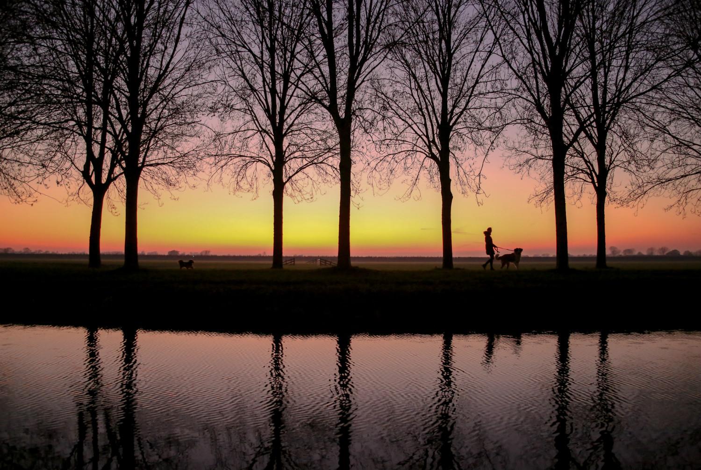 Nummer 1 Publieksprijs Fotowedstrijd IJsselstein 2019 - Roberta Bunnik - Het leven van de zonnige zijkade bekijken