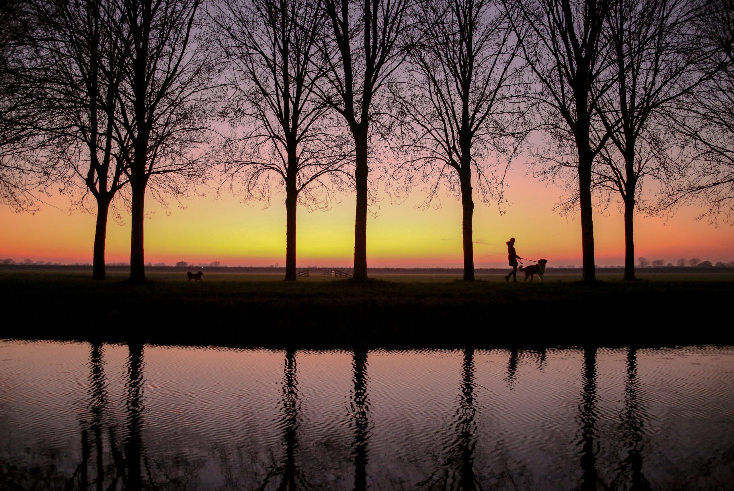 Nummer 10 Fotowedstrijd IJsselstein 2019 - Roberta Bunnik - Het leven van de zonnige zijkade bekijken