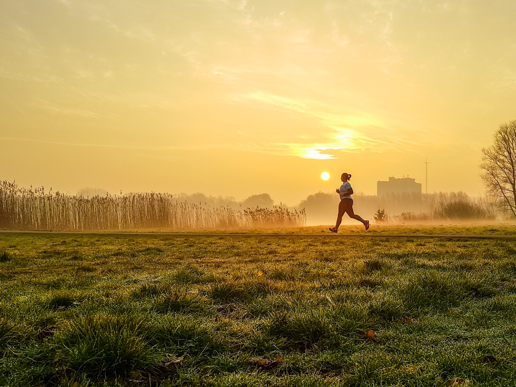 """Nummer 2 Fotowedstrijd IJsselstein 2019 - Petra van Dijk met """"Ochtendloopje"""""""